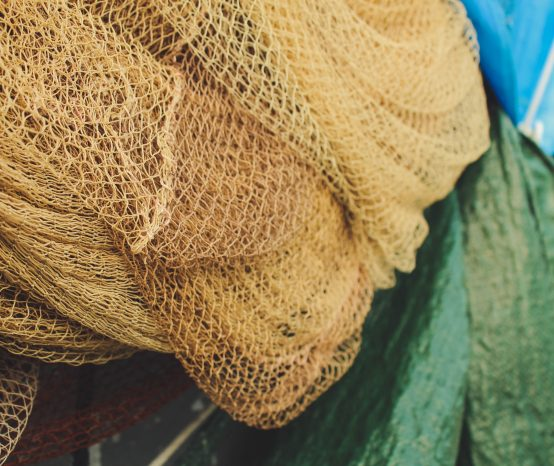 FISHES THAT NETS CAN'T CATCH